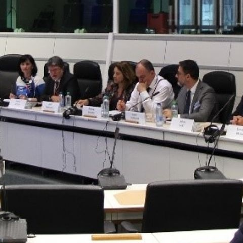 EU Islands at the Forefront of Energy Transition & Decarbonisation of Economies. European Committee of the Regions _ Brussels